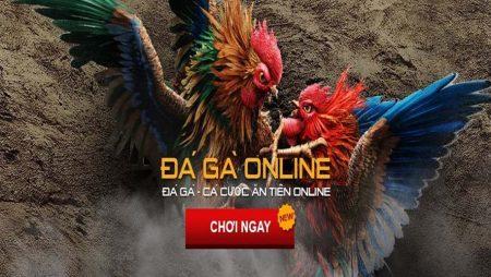Đá gà ăn tiền trên mạng tại Việt Nam